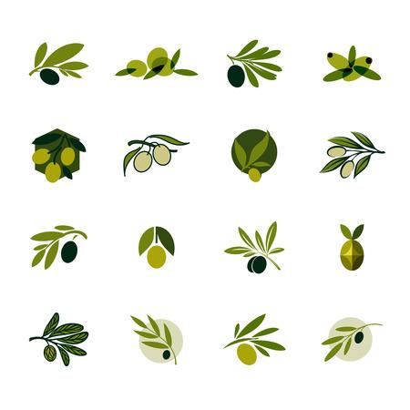 feuilles arbres: Rameau d'olivier Ensemble de modèles de conception et d'icônes