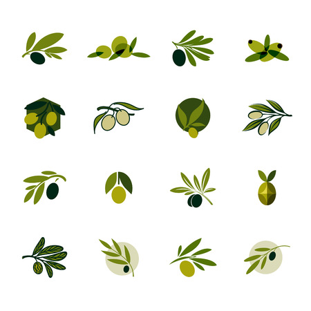 foglie ulivo: ramo d'ulivo Set di modelli e icone