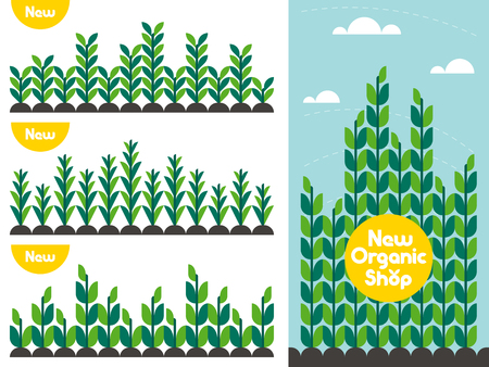 layout: Agricultural crop pattern and organic food shop flat style vector concept for locally grown bio product