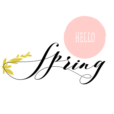Fresh hello spring lettering and growing herb stem
