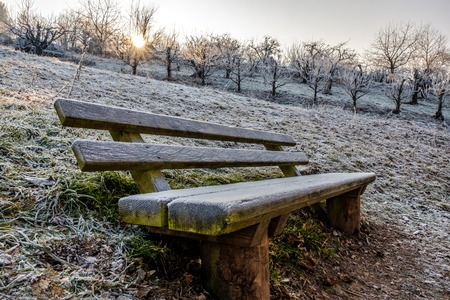 hoarfrost: first snow of winter bench