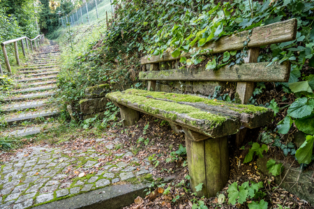 walking path: Mossy bench and walking path uphill. Stock Photo