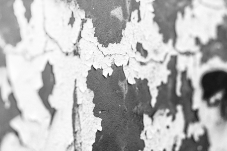 Old plastered wall of gray color with peeling helmet of gray color. There are cracks and irregularities.