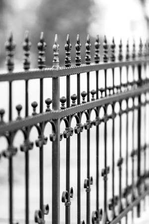 Wrought-iron fencing painted black with the decorations. The background is blurred. Shallow depth of field. Stock Photo