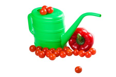 Watering can with vegetables isolated on a white background photo