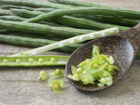 oleifera: Moringa seeds sheep placed in a wooden spoon Stock Photo