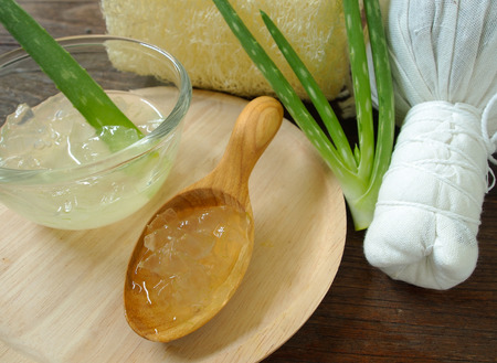 aloe vera spa for use in skin care Фото со стока