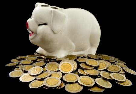 frugality: coin, piggy bank on black background, saving concept,investment concept,business concept. Stock Photo