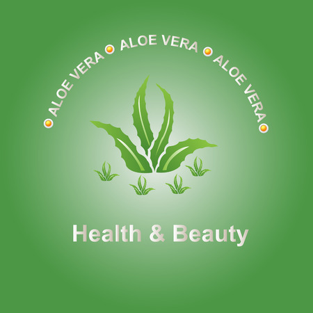 neutralize: Vector illustration; Aloe vera icon on a green background, can be used as a logo and promotional and advertising posters. Illustration