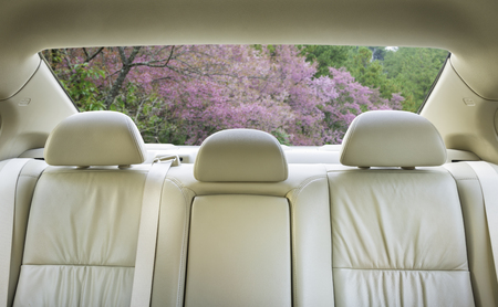 legroom: The view from the front overlooking the back seat of the car. Stock Photo