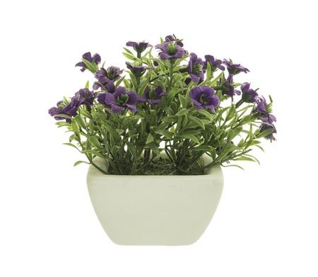 flowerpot: Decorative Purple Petunia in a flowerpot isolated on white background.
