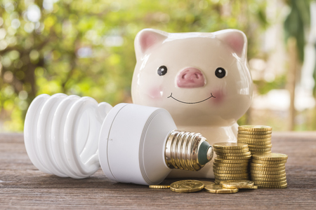 Piggy bank, lamps, coins helped prevent the use of energy, energy-saving concept.