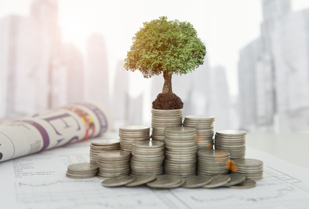 The tree are grow up on coins stack and the growth investment analysis report, business news paper on desk of investor with city background. Concept of finance and investing.