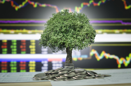 The tree are grow up on coins stack and stock marke chart and graph background.