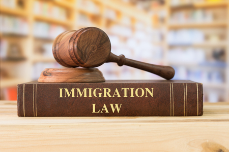 Immigration Law books with a judges gavel on desk in the library. Law education ,law books concept.