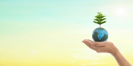 손에 지구, 토양에 큰 나무 성장 에코 바이오 글로브 깨끗 한 자연 배경입니다. 세계 환경의 날과 녹색 개념입니다. 스톡 콘텐츠