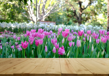 Wood table top on blurred garden of tulips. For product display and advertising and promotional purposes.