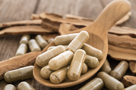 Lingzhi mushroom, Ganoderma,  Herb capsule, Nutritional Supplement, Vitamin Pill, Herbal Medicine.