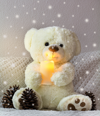 The friendly teddy holds the Christmas light in his paws.