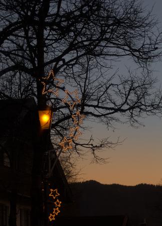 Shining stars line the tree at dusk. Stock fotó