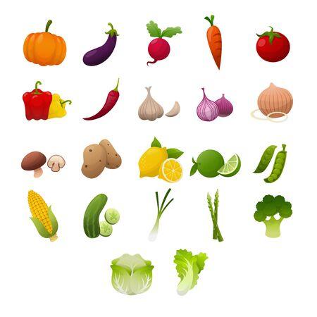Set of fresh vegetables on white background, Vector illustration.