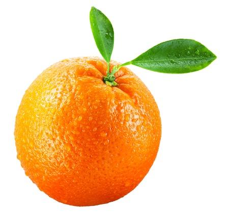 naranja fruta: Fruto mojado naranja con hojas aisladas en blanco