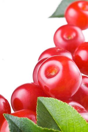Cherries on white background photo