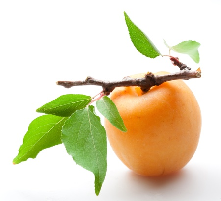 Aprikose mit hellen verlässt Nahaufnahme auf weißem Hintergrund Standard-Bild