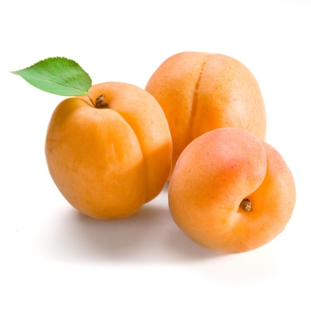apricots on white background  isolated