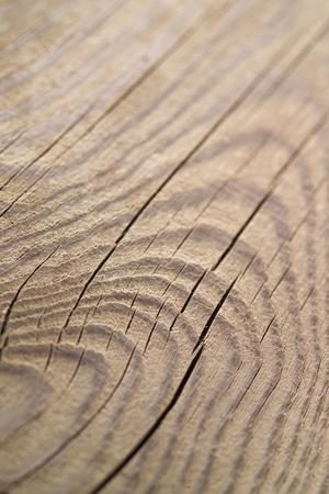 log wall: Wood texture Stock Photo