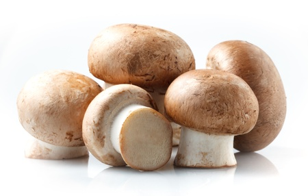 champignons: Mushroom  royal champignons on a white background Stock Photo