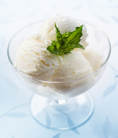 white vanilla ice cream closeup Stock Photo - 19724109