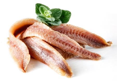 anchovies on white with oregano Stock Photo