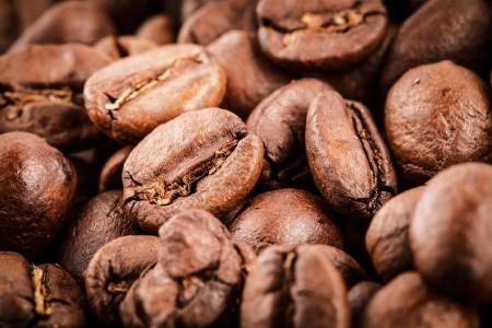coffee beans macro Stock Photo - 22247779