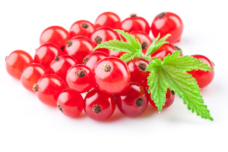 red currant: Red currants with leaves Stock Photo