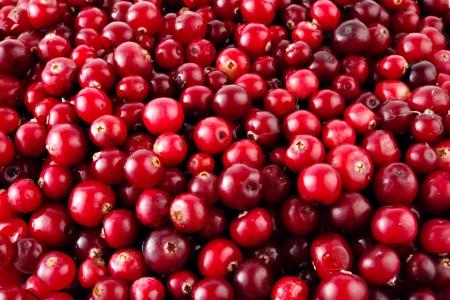 赤熟したクランベリーの背景
