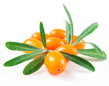 sea food: Sea buckthorn isolated on the white