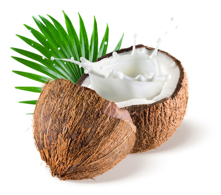 coconut fruit: Coconuts with milk splash and leaf on white background