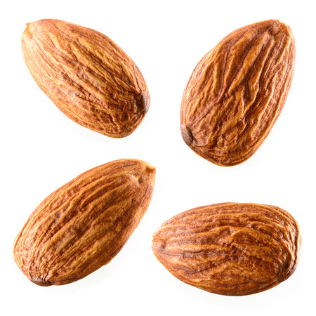 Almond. Collection isolated on white background photo