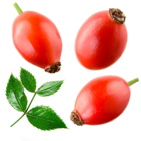 Rose hip isolato su uno Collection bianco