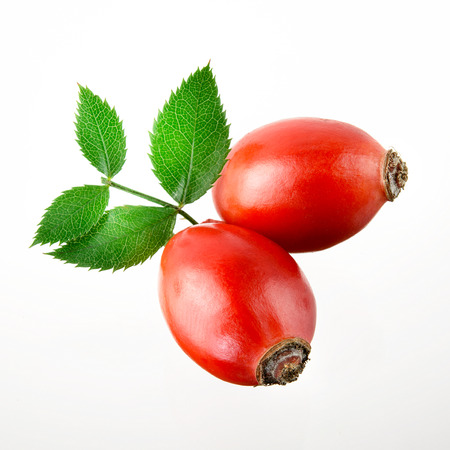 briar: Rose hip. Two berries isolated on a white