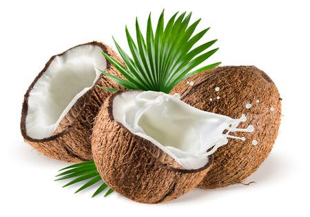noix de coco: Noix de coco avec splash de lait et de feuilles sur fond blanc Banque d'images
