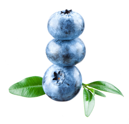 bilberries: Blueberry. Three bilberries isolated on white