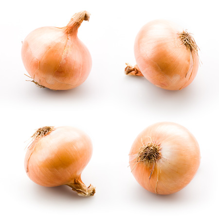 onion isolated: Cebolla madura aislada en un fondo blanco