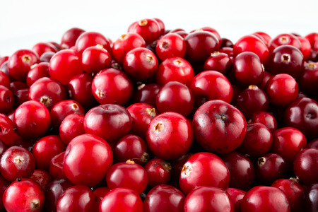 cranberry: Red ripe cranberries Stock Photo