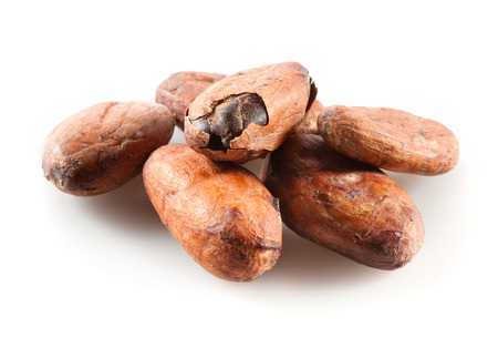 Pile of cocoa beans on white photo