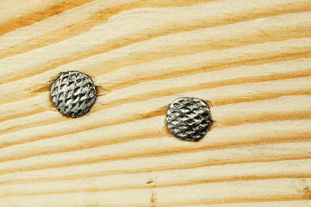 Nails. Heads in wood. Top view photo