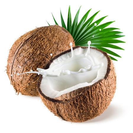cocotier: Noix de coco avec splash de lait et de feuilles sur fond blanc Banque d'images