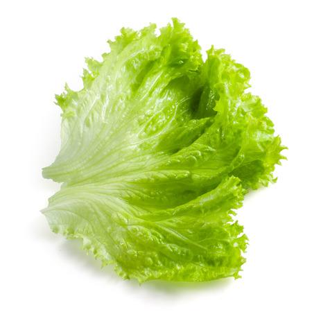 サラダの葉。白の背景に分離されたレタス 写真素材