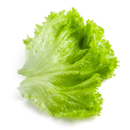 vegetable salad: Salad leaf. Lettuce isolated on white background